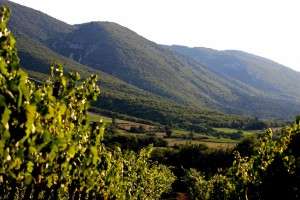 Luberon Mountain